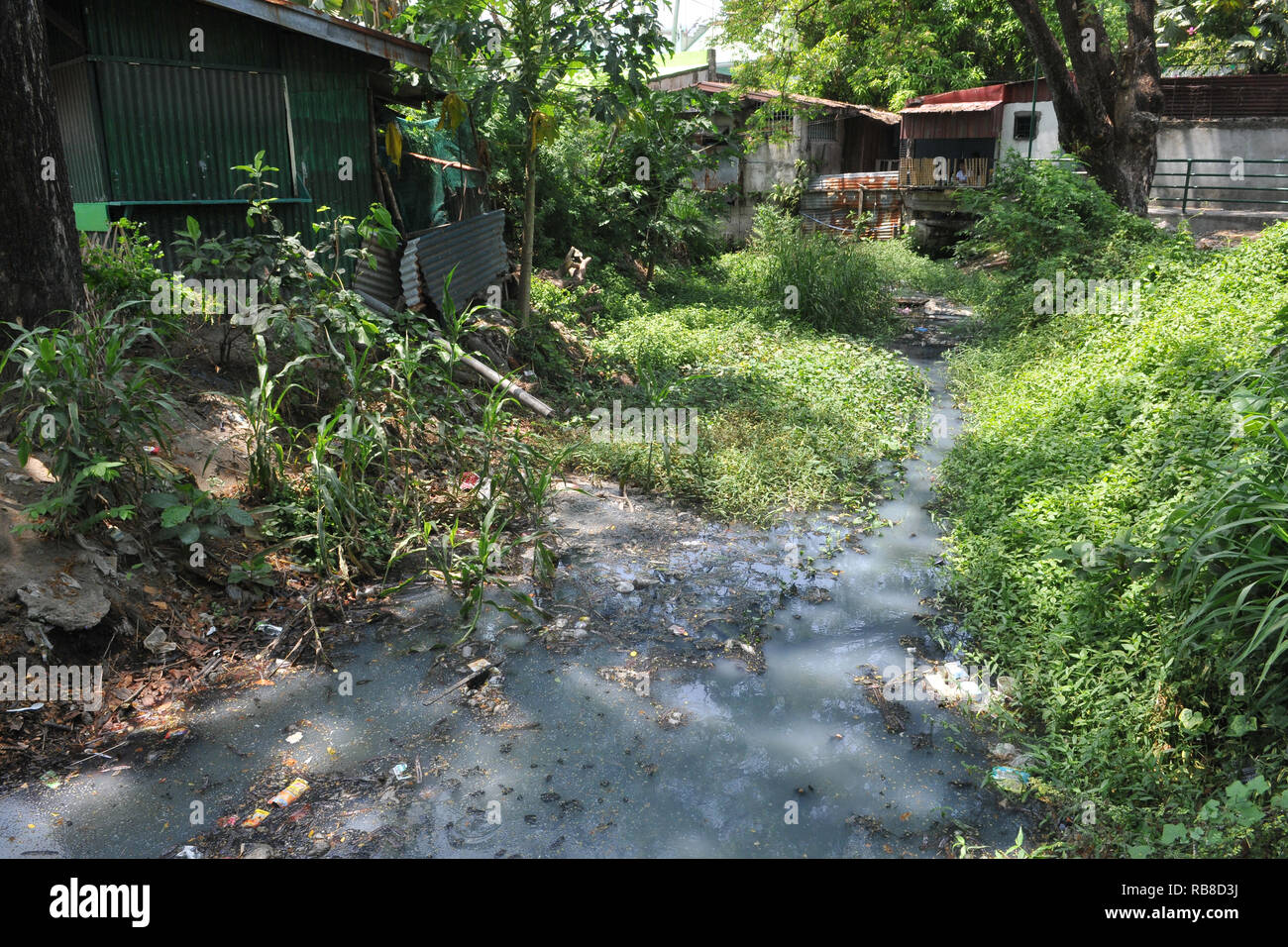 Pollution of a river in the Philippines - Stock Image