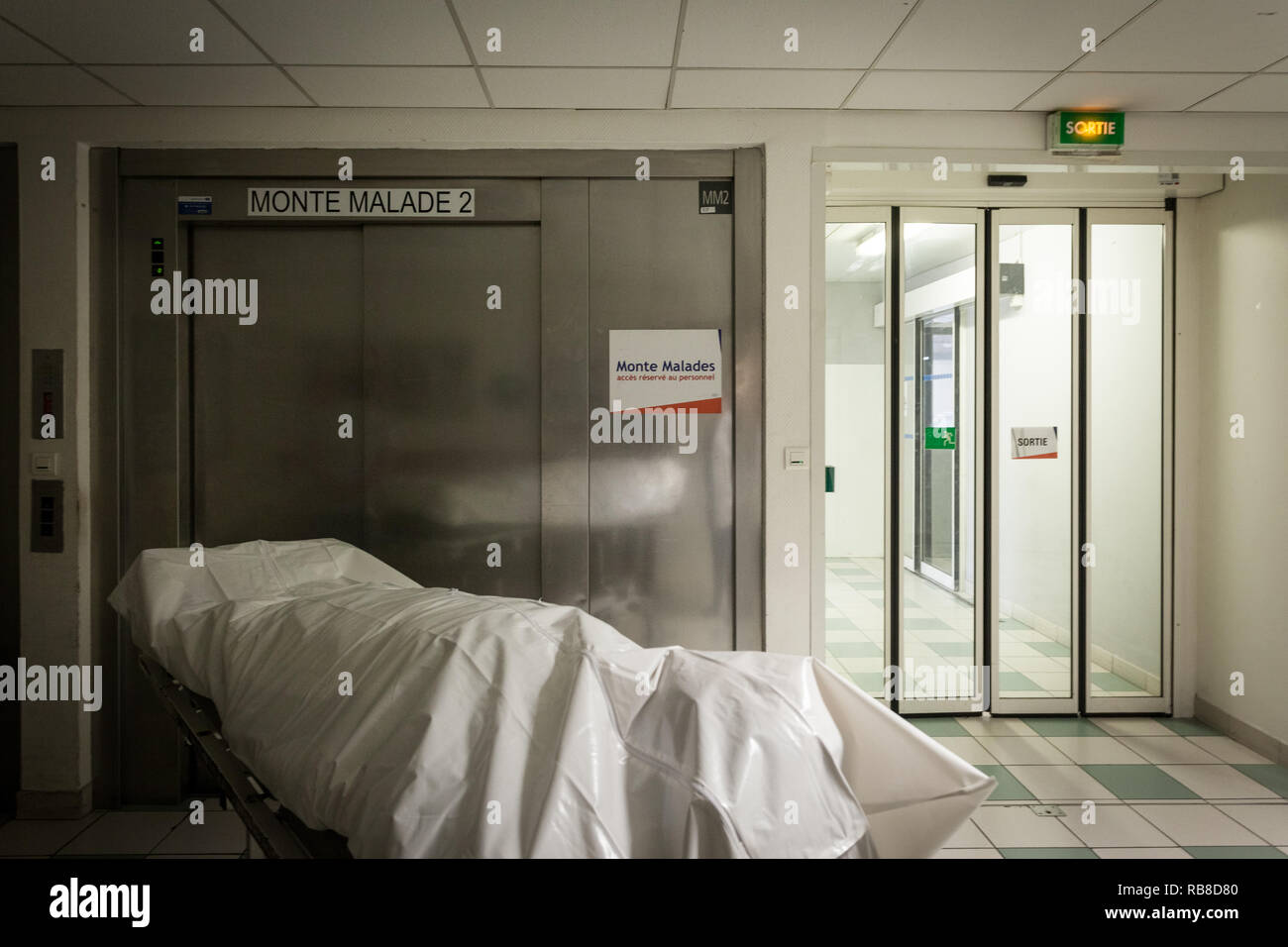 working on a dead body in a mortuary room in an hospital RB8D80 - How To Get A Job In The Hospital Morgue