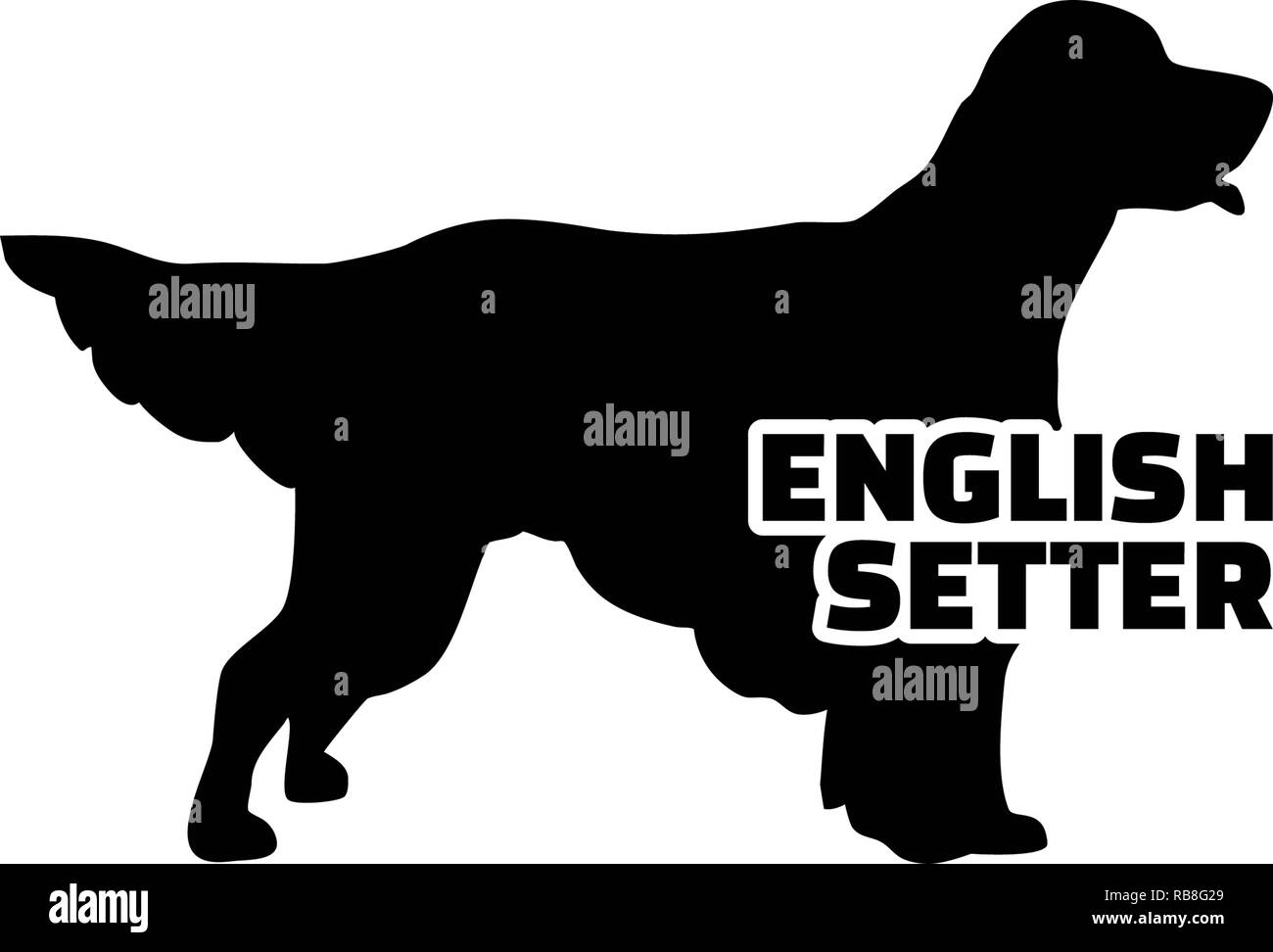 c933f5936a7c1 English Setter silhouette real with word - Stock Image