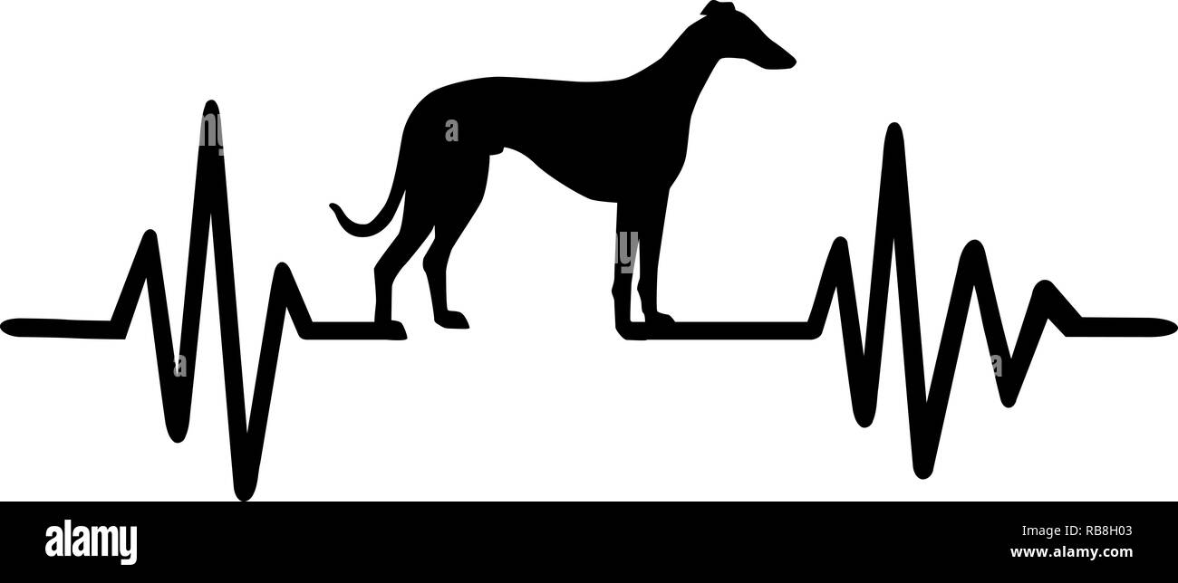 Heartbeat pulse line with Italian Greyhound dog silhouette - Stock Image