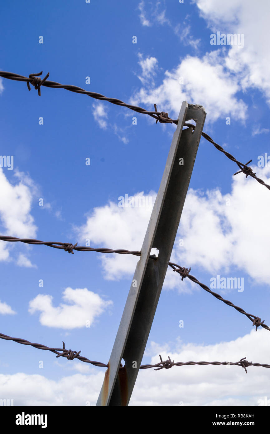 The barbed wired fence in the Southern California sun. - Stock Image