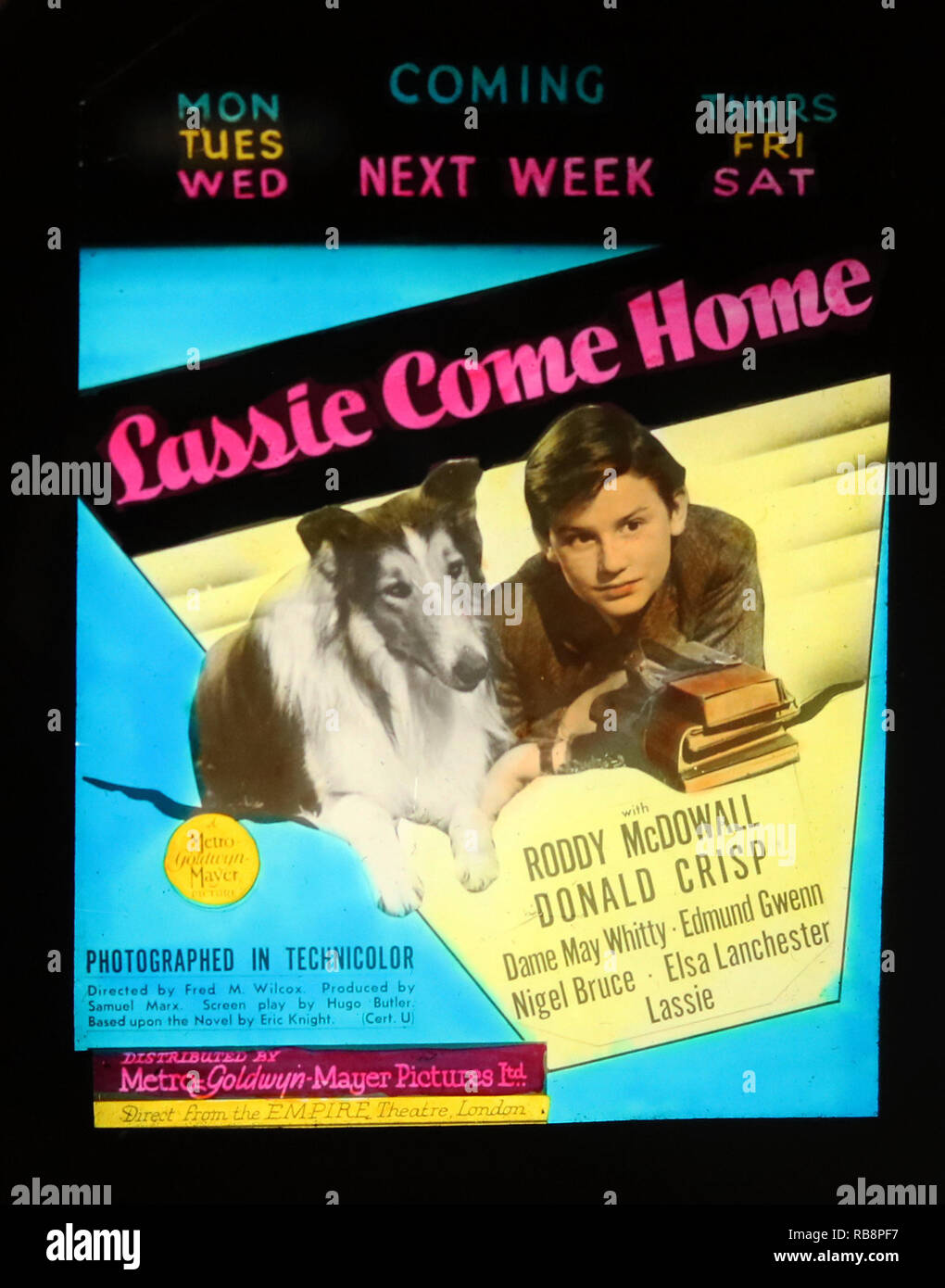Roddy McDowall 'Lassie Come Home' movie advertisement - Stock Image