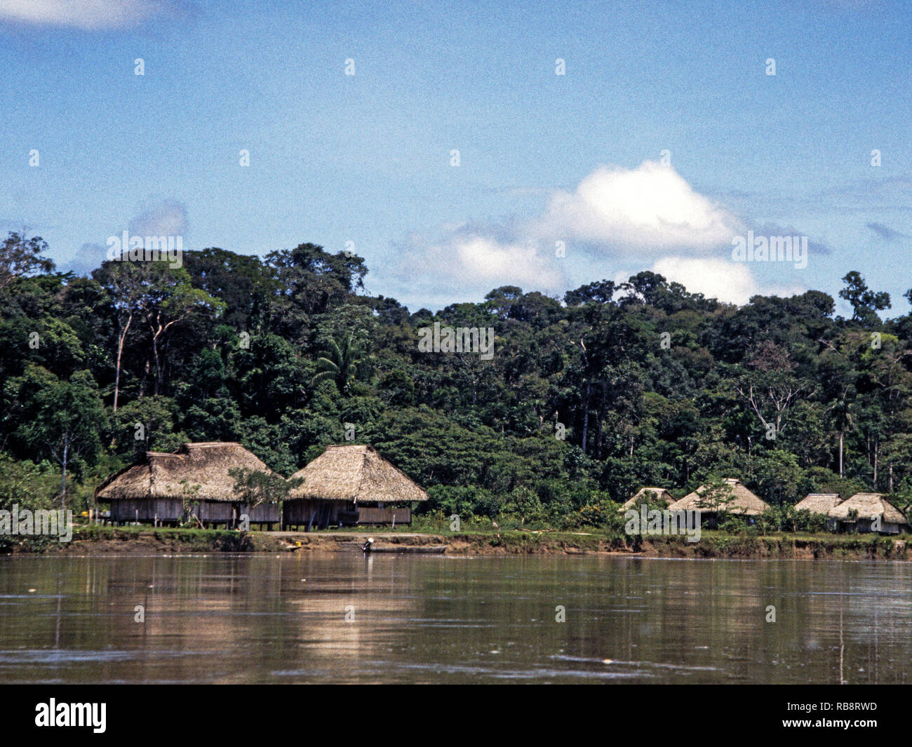 Ecuador.A South American Indian village on the bank of the River Napo. The Napo is a tributary of the River Amazon. - Stock Image