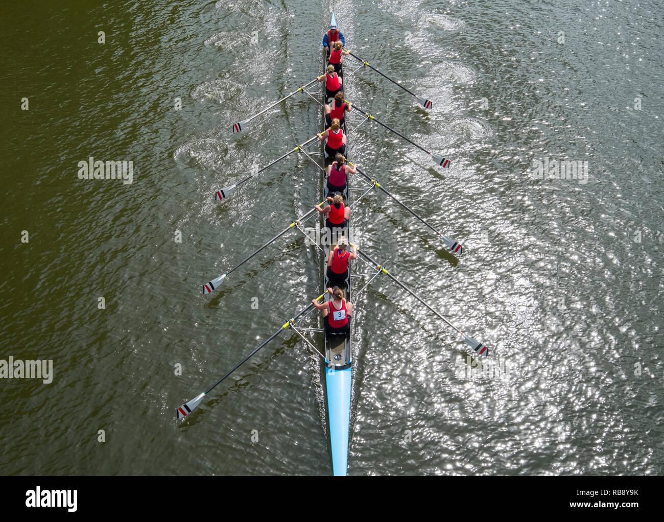 A rowing crew competing at Shrewsbury Regatta passing under Kingsland Bridge on the River Severn, Shropshire, England, UK - Stock Image