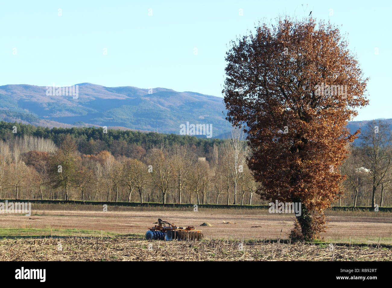 plow in the field, background nature - Stock Image