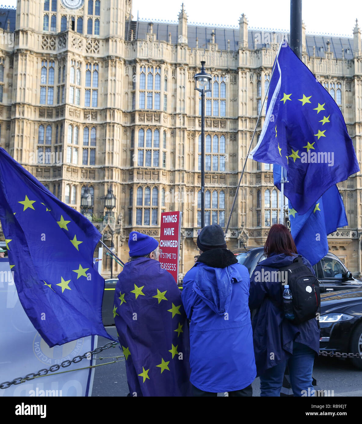 London, UK. 8th Jan, 2019. Anti-Brexit demonstrators seen waving European Union flags during the protest.Anti Brexit demonstrators gather outside the British Parliament a week before the MPs to vote on the finalized Brexit deal, MPs will vote on Theresa May's Brexit deal on Tuesday, 15 January. Credit: Dinendra Haria/SOPA Images/ZUMA Wire/Alamy Live News - Stock Image