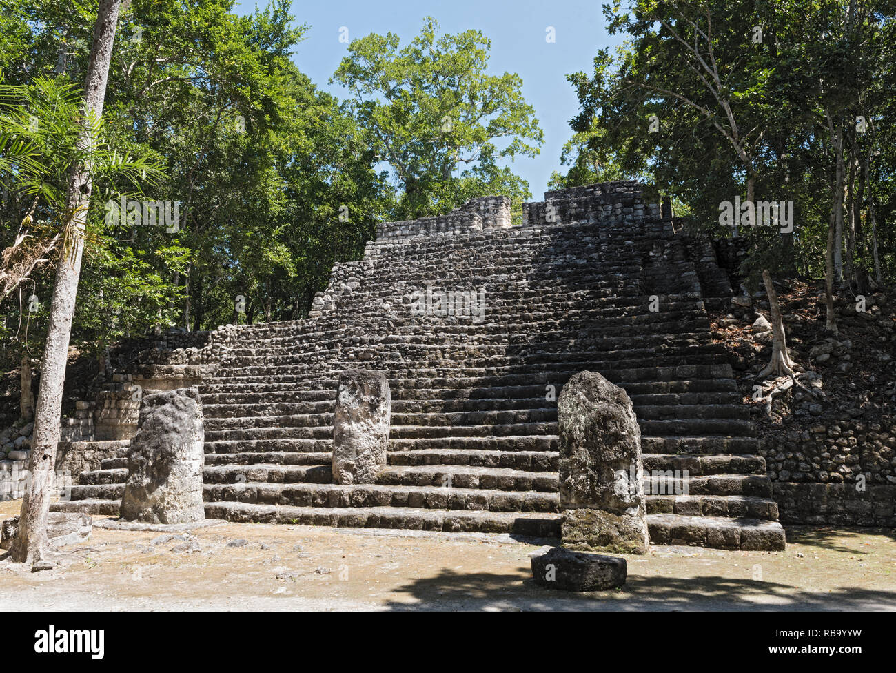the ruins of the ancient mayan city of calakmul, campeche, mexico - Stock Image