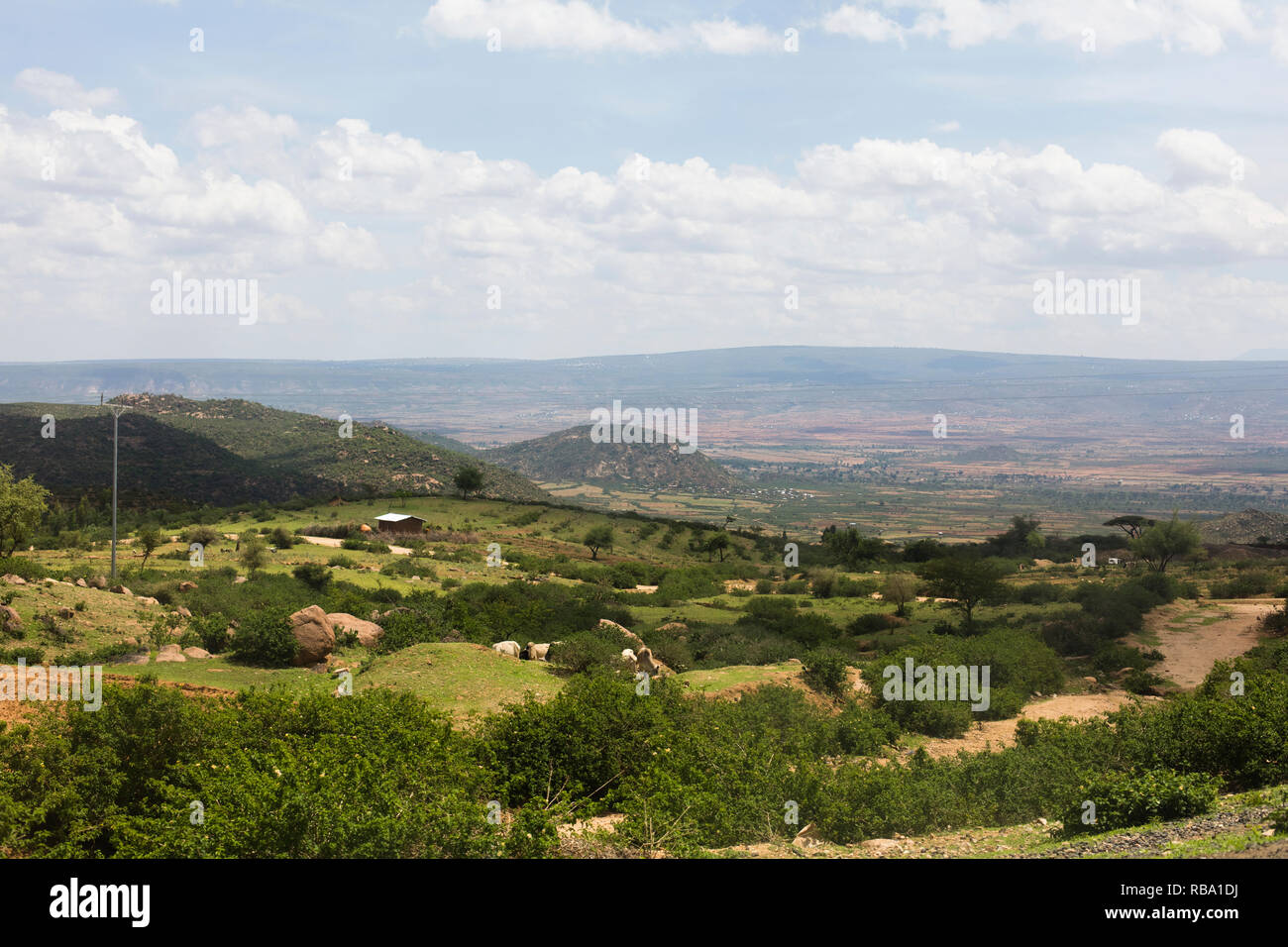 Harar / Ethiopia - May 2017: The landscape close to Harar. - Stock Image