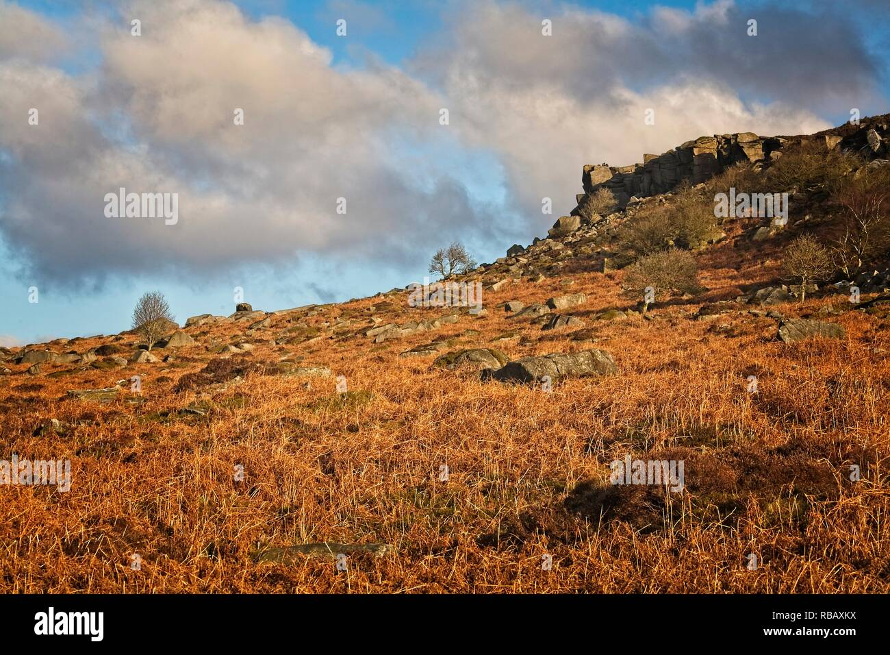 GRITSTONE SCARP SLOPE WITH BRACKEN COVERED SCREE BELOW A MOORLAND LANDSCAPE IN THE SUNSHINE - Stock Image