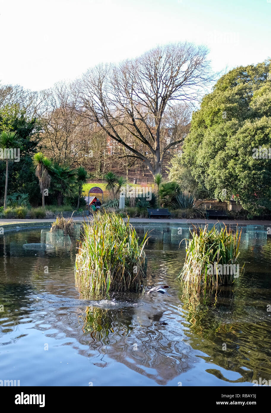 Queens Park pond Brighton park view in winter - Stock Image