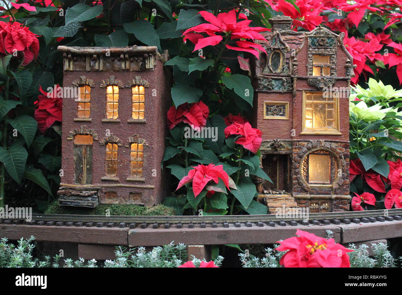 Christmas Holiday flower Show with small scale buildings and toy train tracks at the Lincoln Park Conservatory in Chicago, Illinois, USA. - Stock Image