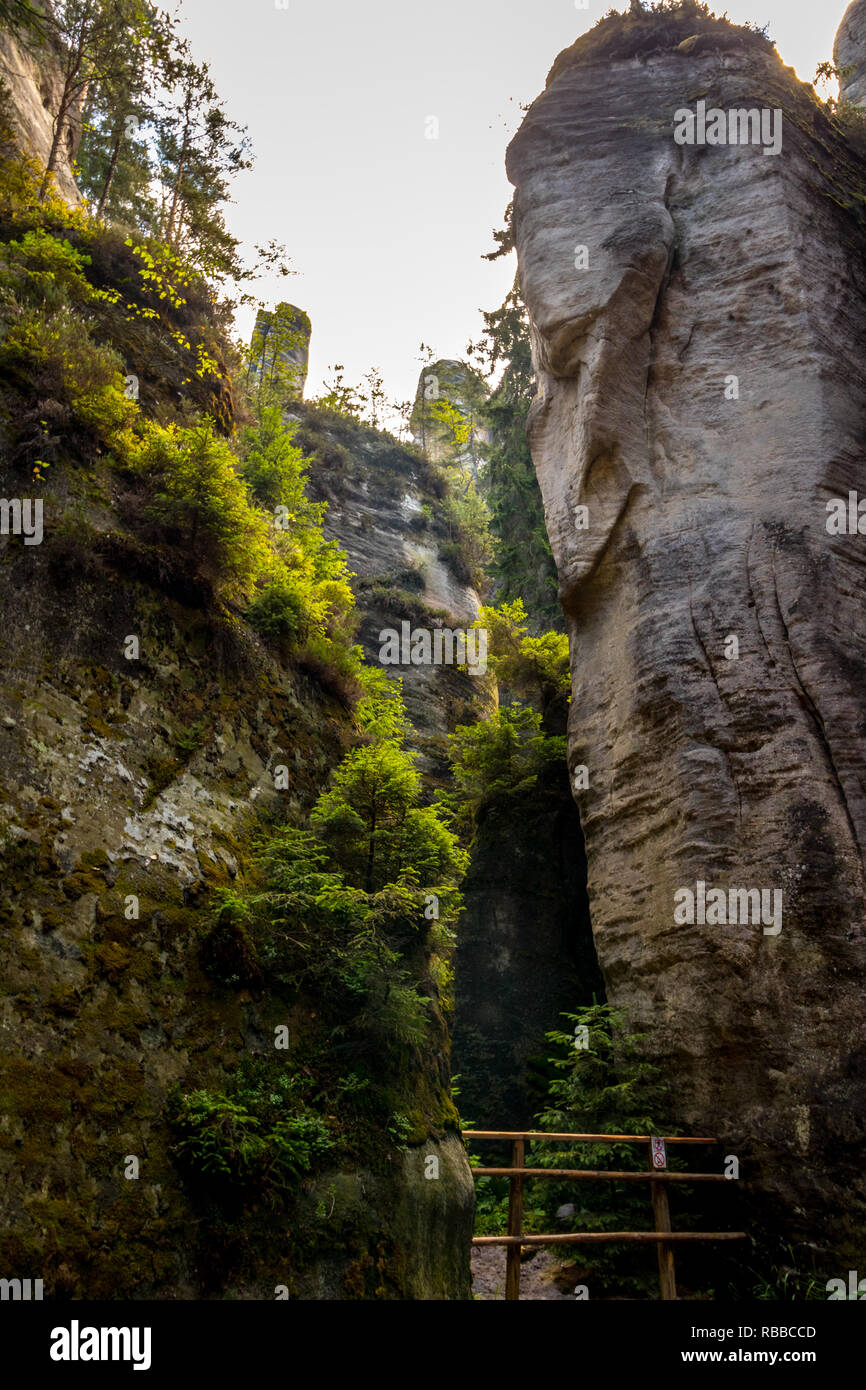 Adrspach teplice rocks in summer - Stock Image