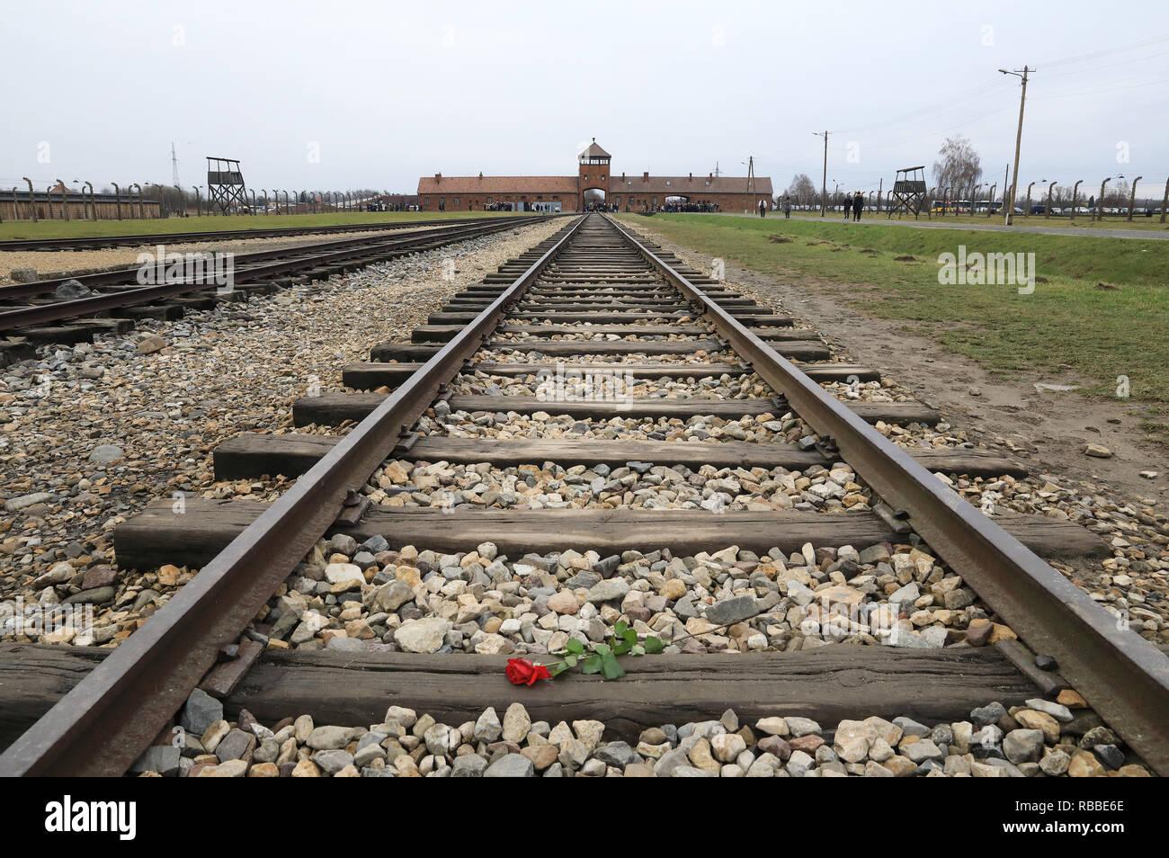 The rails entering the grim extermination camp of Auschvitz 11 Berkenau, near Krakow, Poland - Stock Image