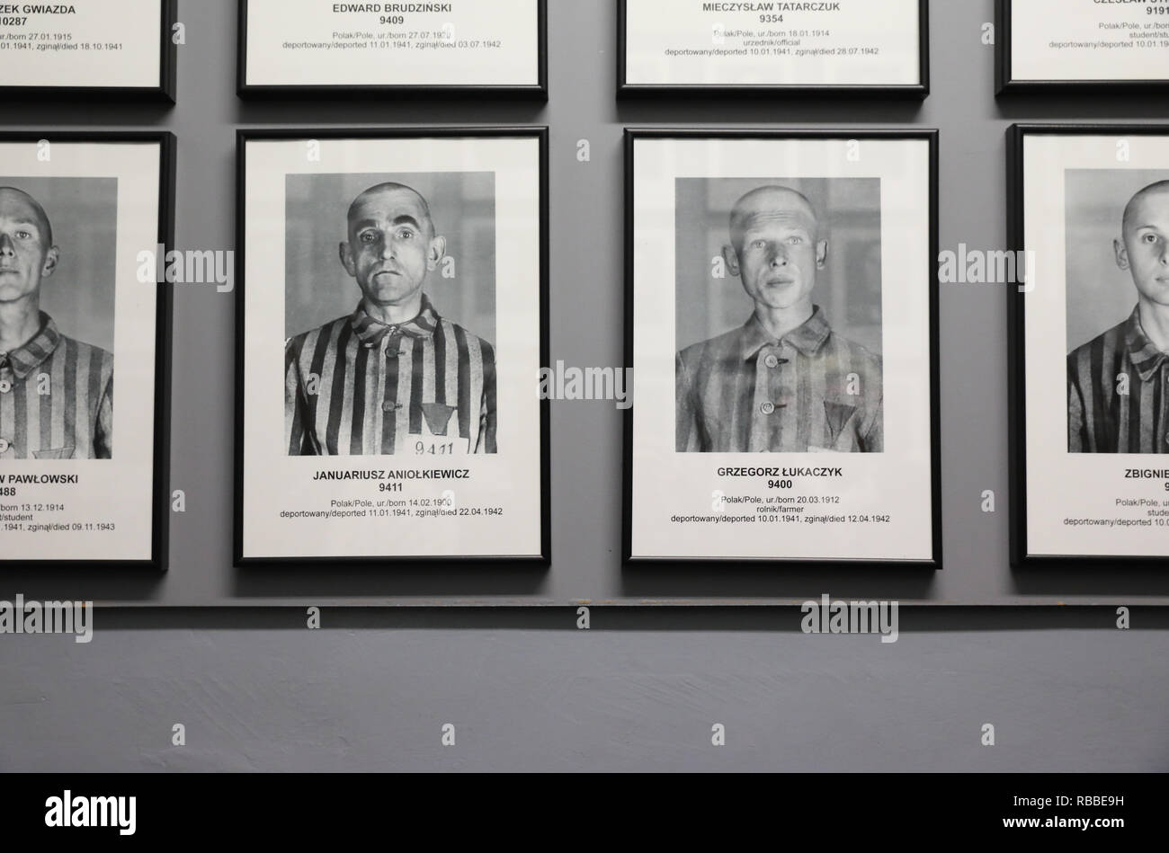 Photos of prisoners line the walls in the moving exhibition at Auschvitz 1 concentration camp in Poland - Stock Image