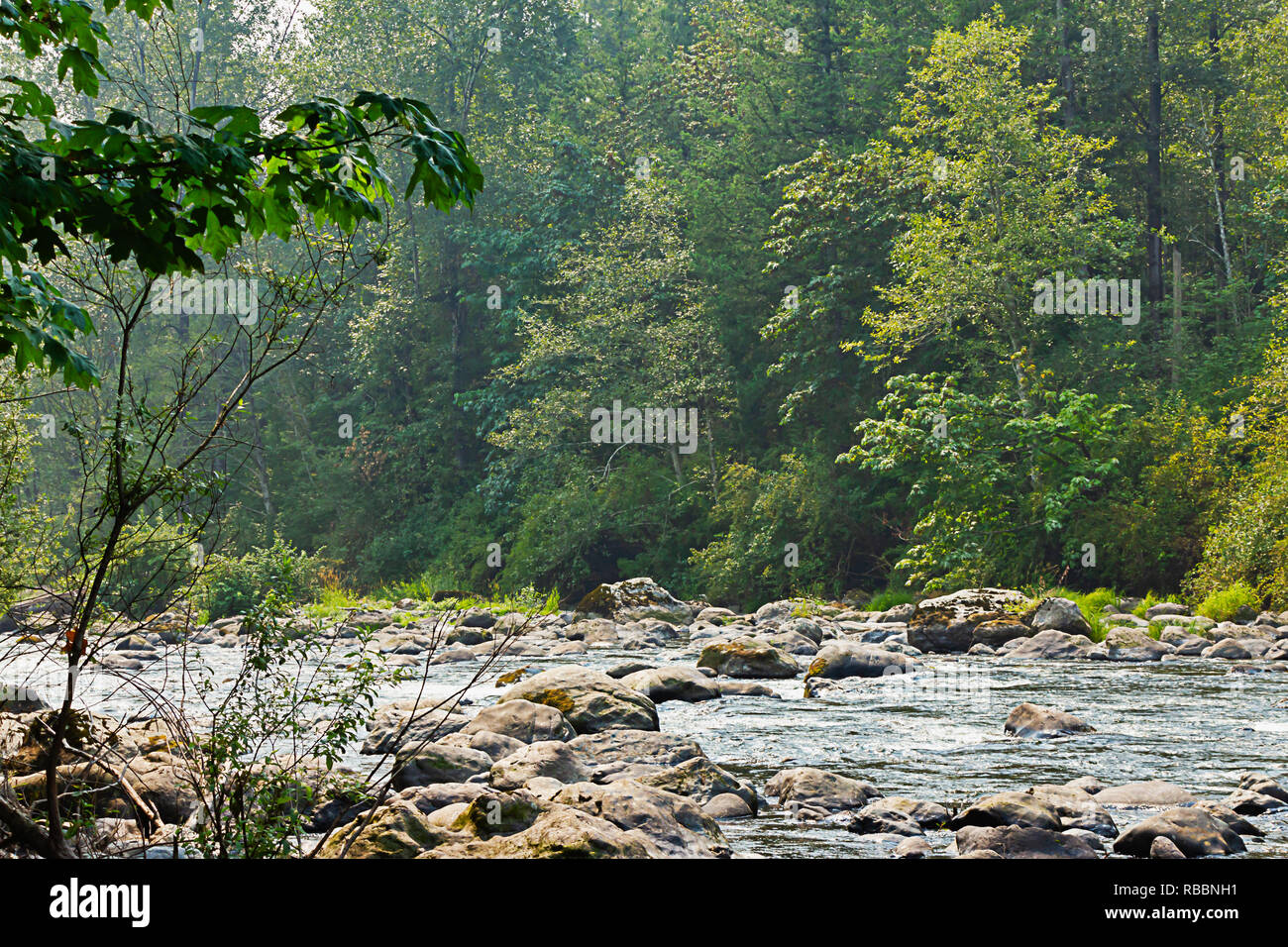 green river gorge in washington state with boulders and shallow pools in summer - Stock Image