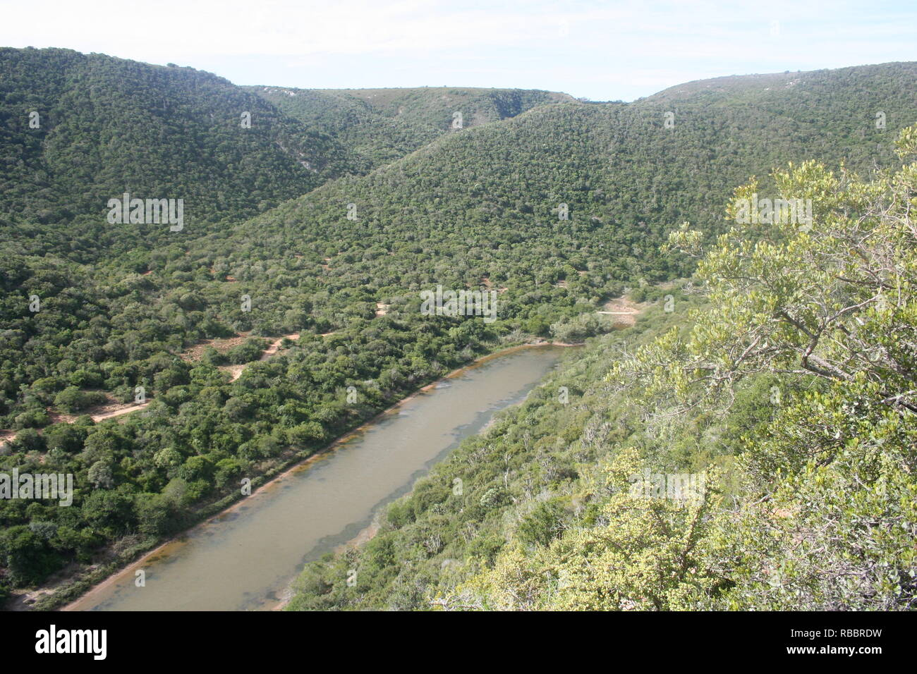 Outlook over Bushmansriver from a hilltop in the Eastern Cape - Stock Image