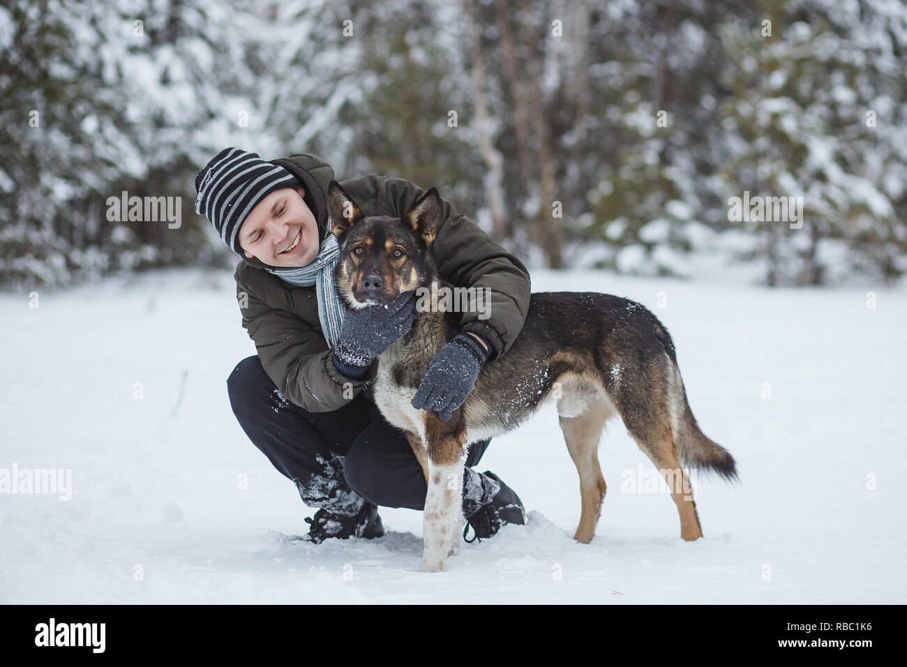 Young man with his shepherd dog walking in winter conifer forest. - Stock Image