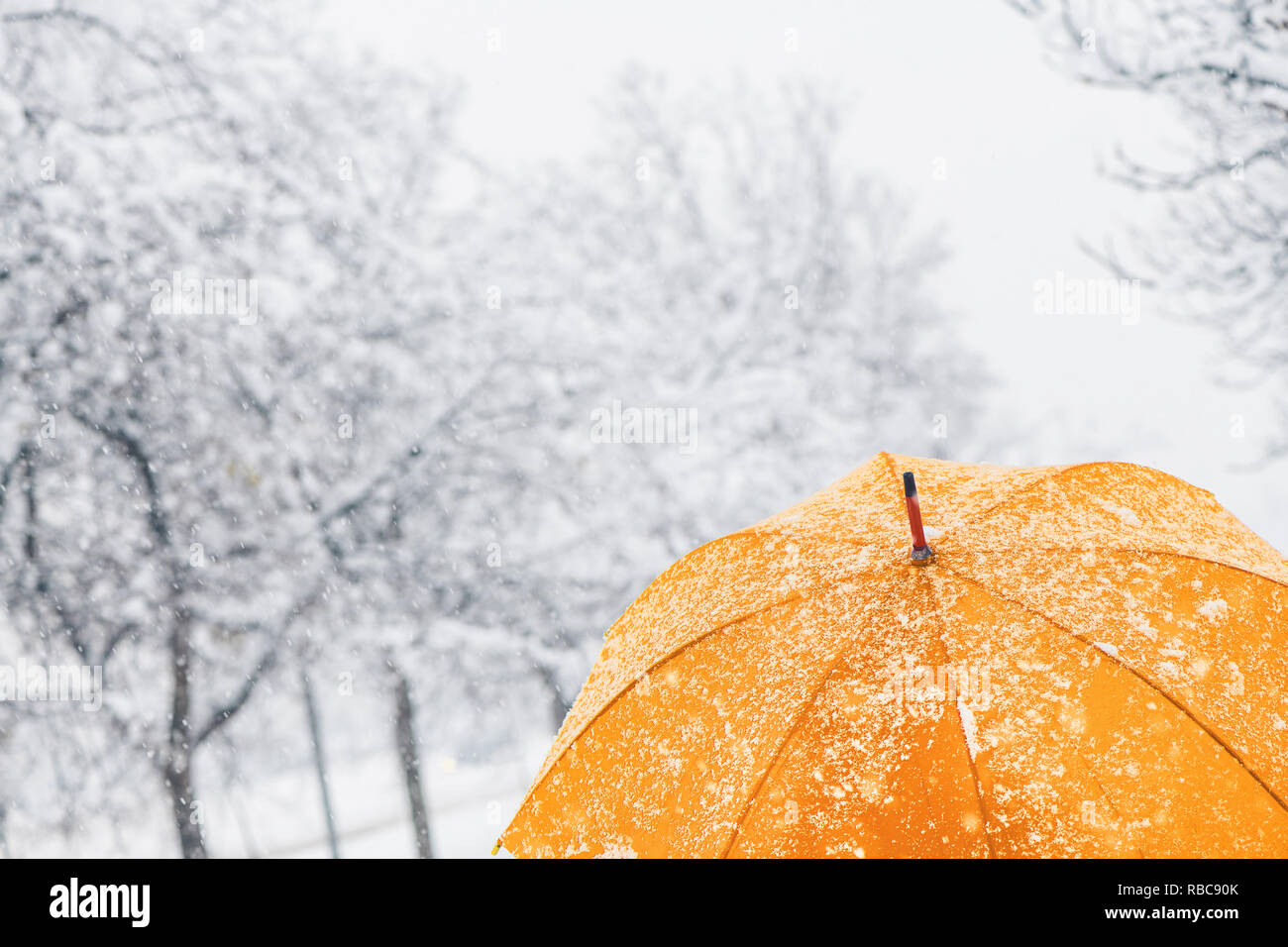 Close up of yellow umbrella in snow with frost and snowflakes - Stock Image