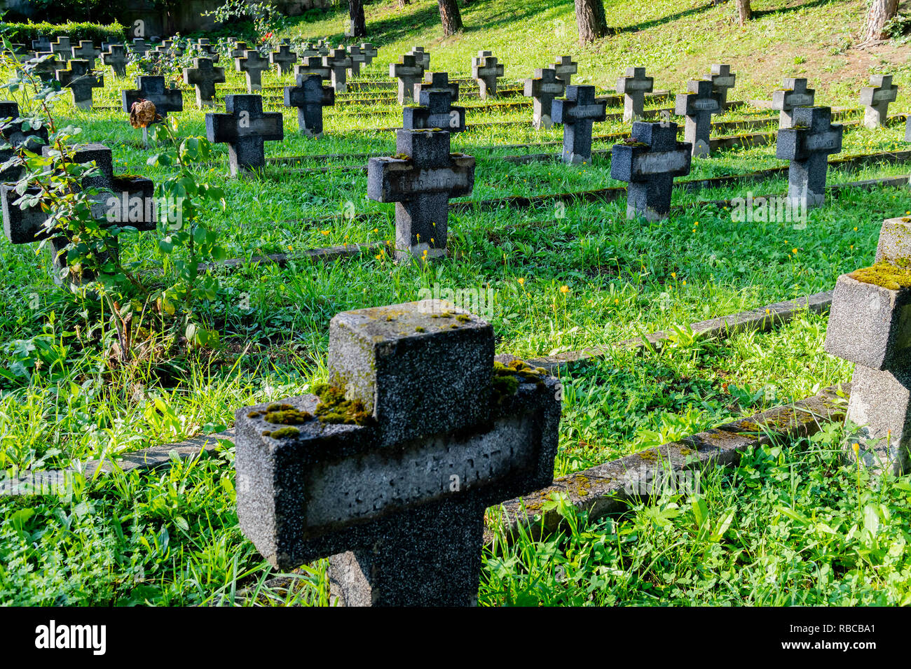 The military cemetery in Cluj, Romania,on a sunny day - Stock Image