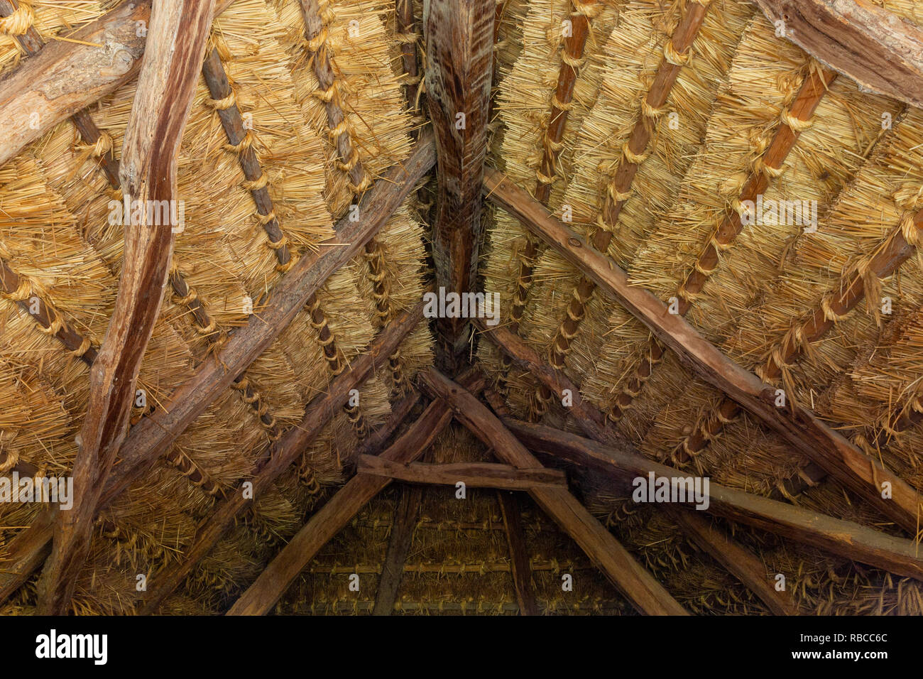 The thatched roof of a house in the so called `Row of Wine Cellars` open-air museum in Cak, Hungary. Small house for pressing grapes and storing fruit - Stock Image