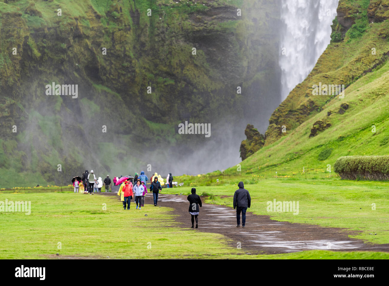 Skogafoss, Iceland - June 14, 2018: Waterfall on cliff with green grass hills and many tourists people walking with umbrellas and ponchos on trail roa - Stock Image
