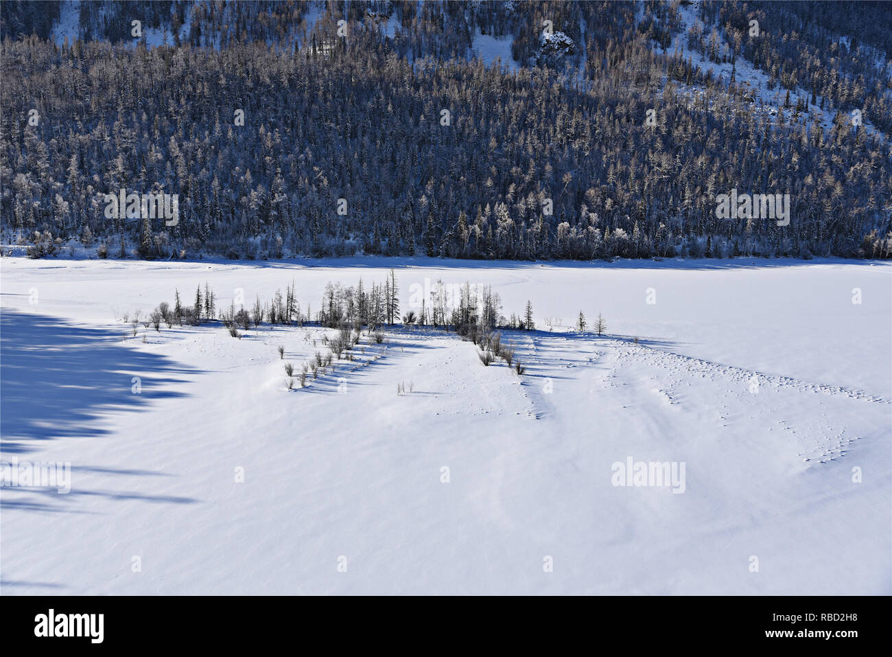 Xinjiang, Xinjiang, China. 9th Jan, 2019. Xinjiang, CHINA-Stunning winter scenery of Kanas Scenic Area in Xinjiang. Credit: SIPA Asia/ZUMA Wire/Alamy Live News Stock Photo