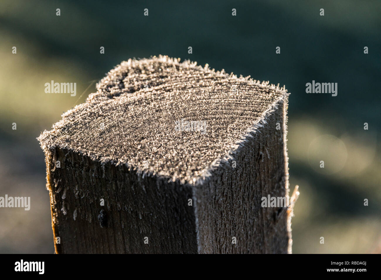 Frost on the top of a wooden fence post - Stock Image