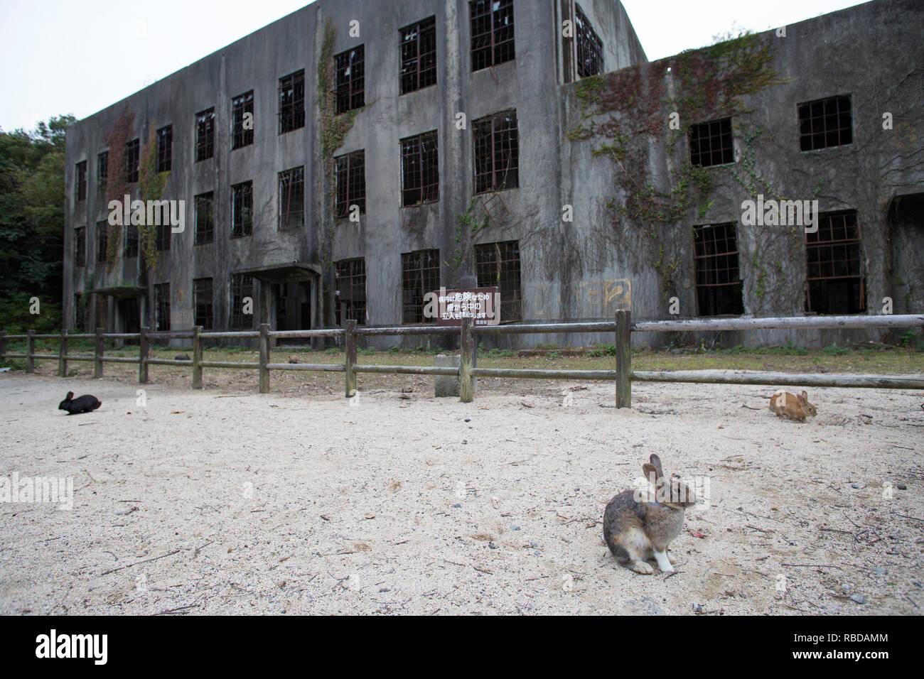 The ruins of the power plant in Okunojima island in Takehara, Hiroshima, Japan.  Photo by Akira Suemori - Stock Image