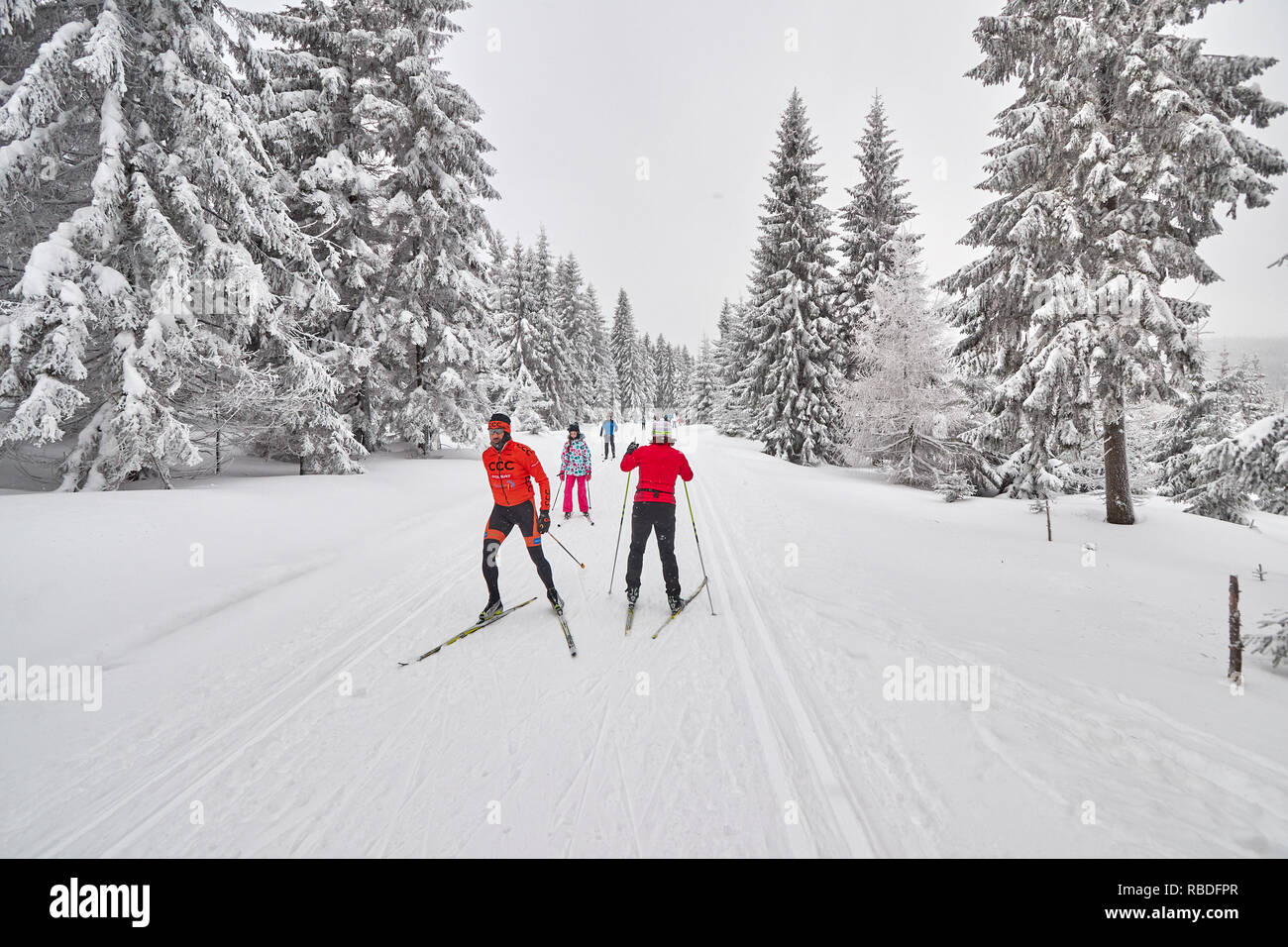 Jakuszyce, Poland - January 06, 2017: Cross-country skiers on trail after heavy snowfalls. For over 30 years Jakuszyce has been the host of the Piast  - Stock Image