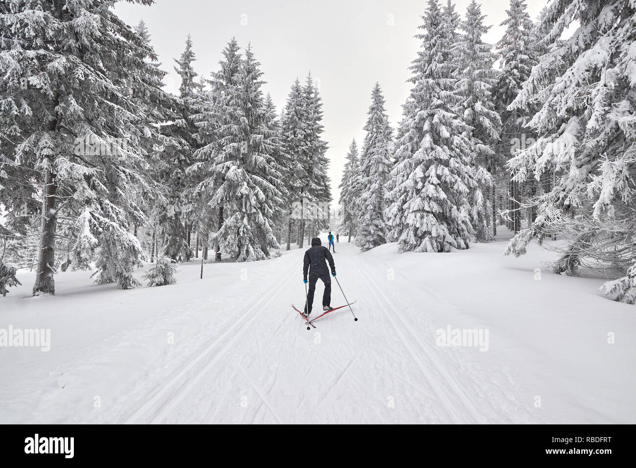 Cross-country skiers on trail after heavy snowfalls, Jakuszyce, Poland. - Stock Image