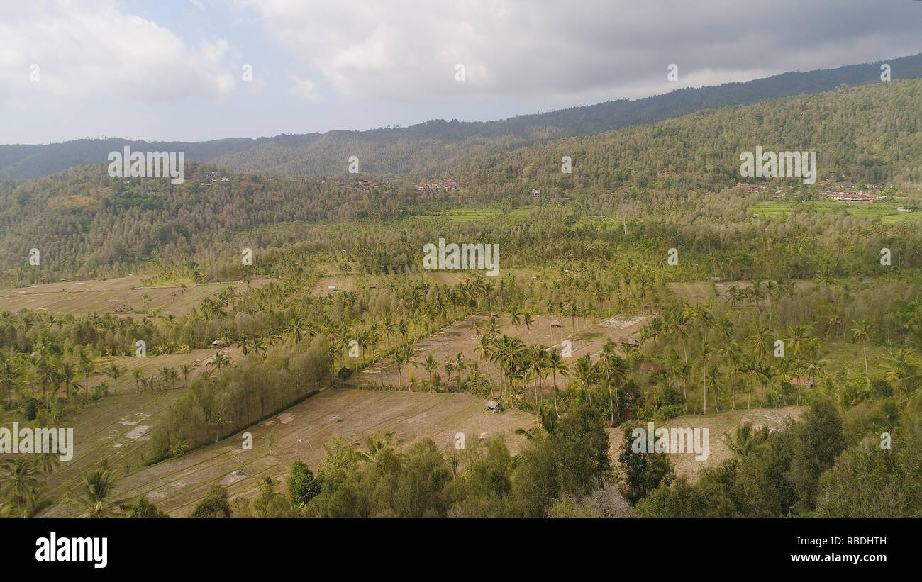 rural landscape mountains with farmlands, village, fields with crops, trees. Aerial view farm lands on mountainside. tropical landscape Bali, Indonesia. - Stock Image