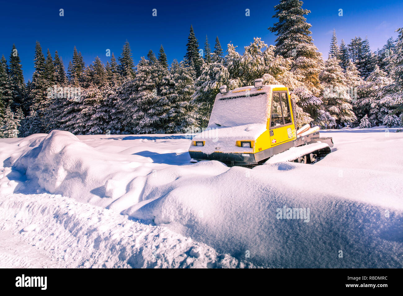 Yellow tractor crawler covered under snow on Icy country road in snowy forest in winter. Winter landscape with snowy road - Stock Image