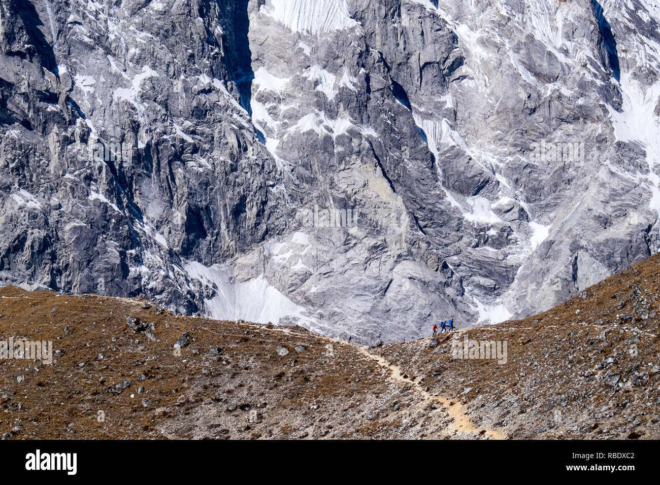 Trekkers on Kyanjin Ri, a popular viewpoint on the Langtang Trek, Nepal - Stock Image