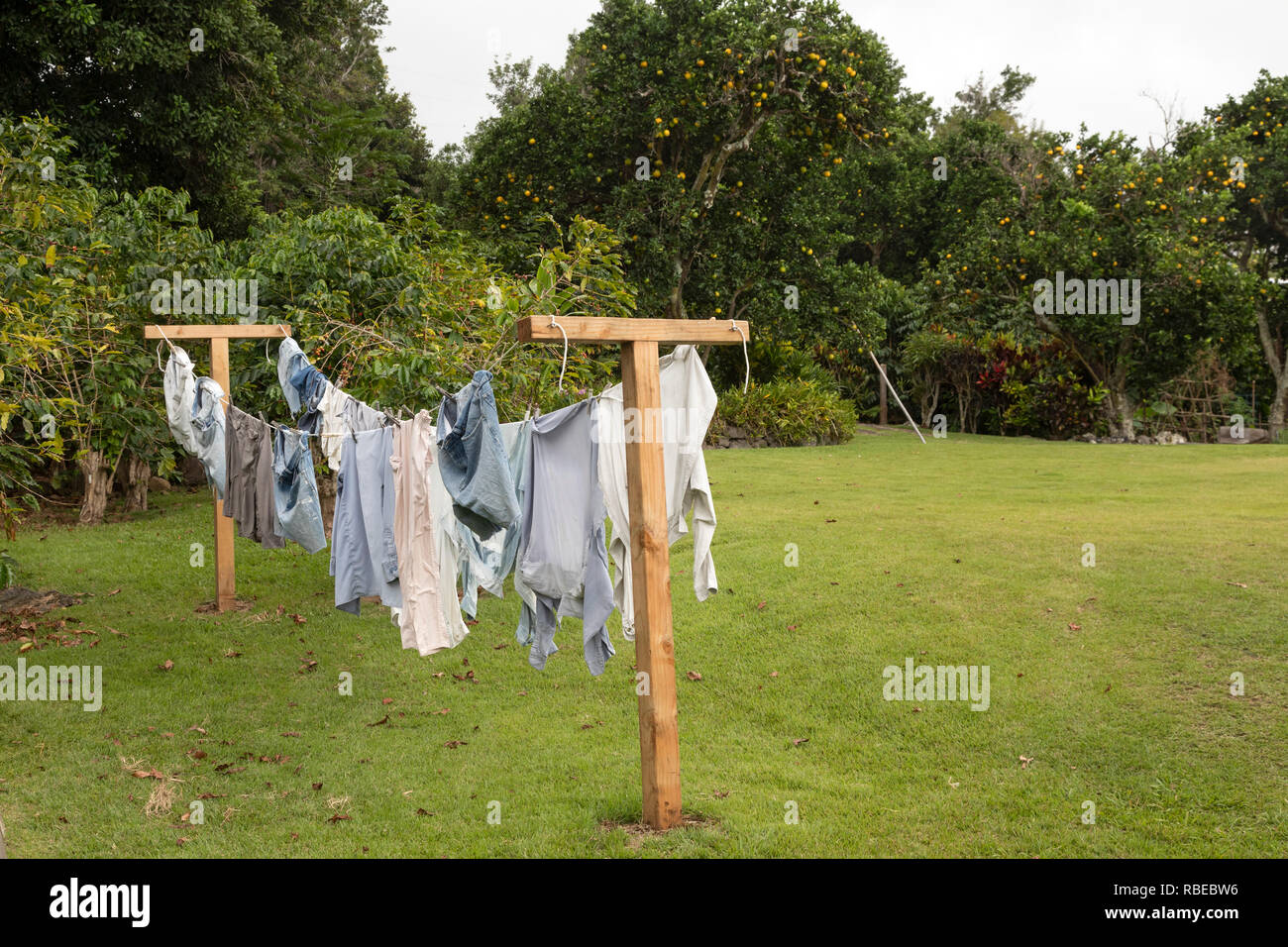 Captain Cook, Hawaii - Laundry hanging on the clothesline at the Kona Coffee Living History Farm. Japanese immigrant Daisaku Uchida and his family ope - Stock Image