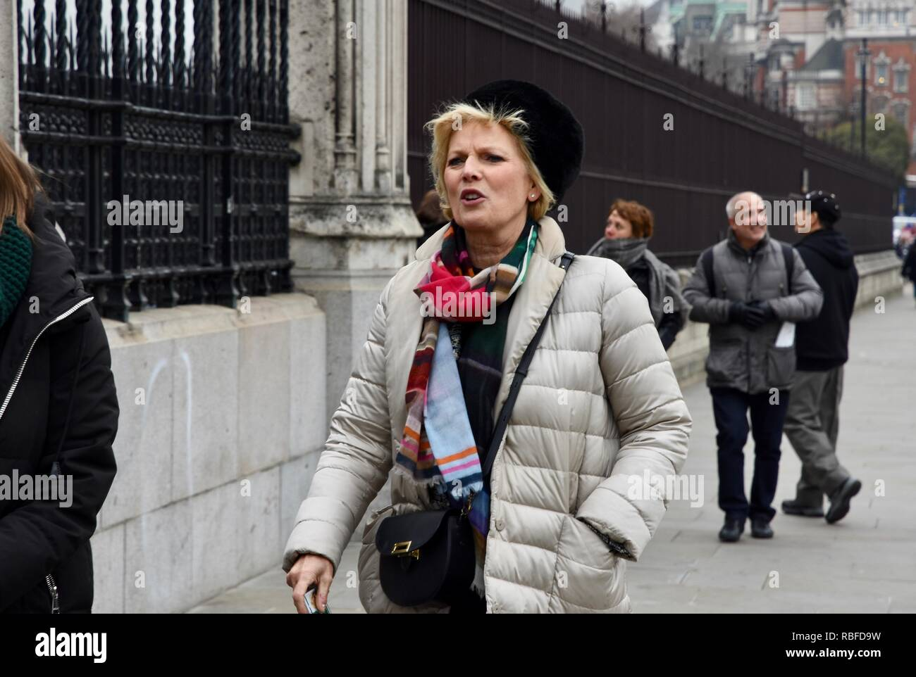 Westminster, London, UK. 10th Jan 2019. Anna SourbyConservative MP returned to Parliament following a peaceful encounter with Pro and Anti Brexit protesters on College Green, Westminster, London.UK Credit: michael melia/Alamy Live News Stock Photo