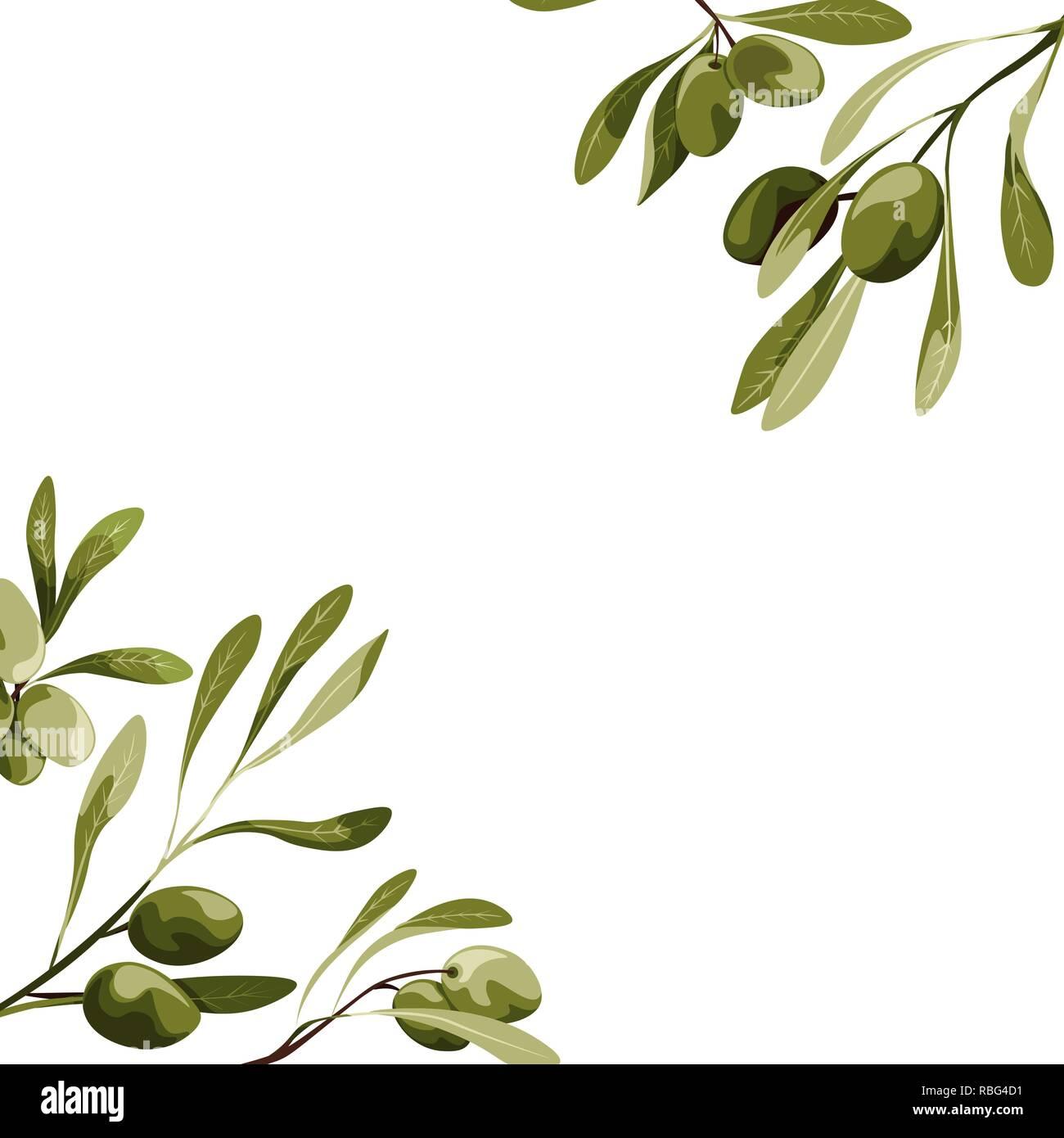 Vector corners with olive tree decoration. Vegan food illustration - Stock Image