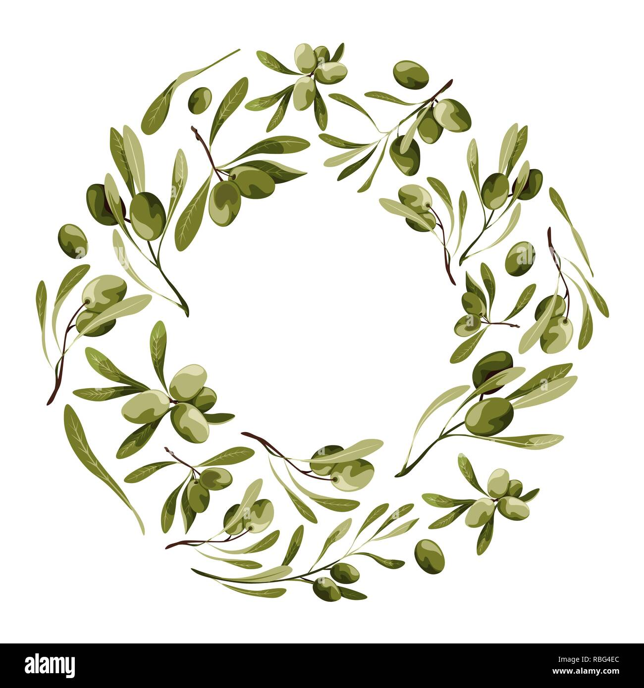 Vector wreath with olive tree. Nature frame with vegetables with leaves - Stock Image