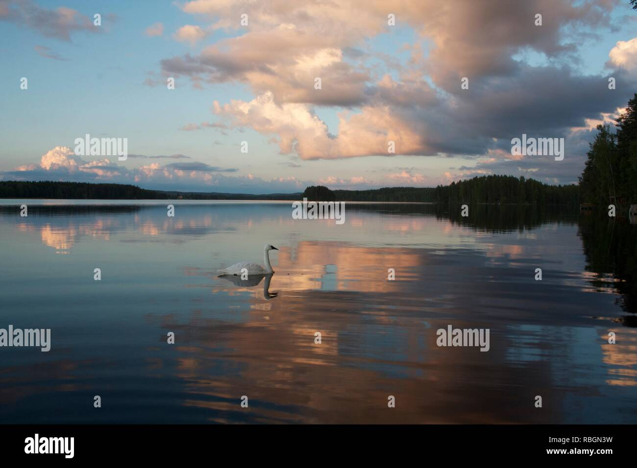 A lake landscape from Finland - Stock Image