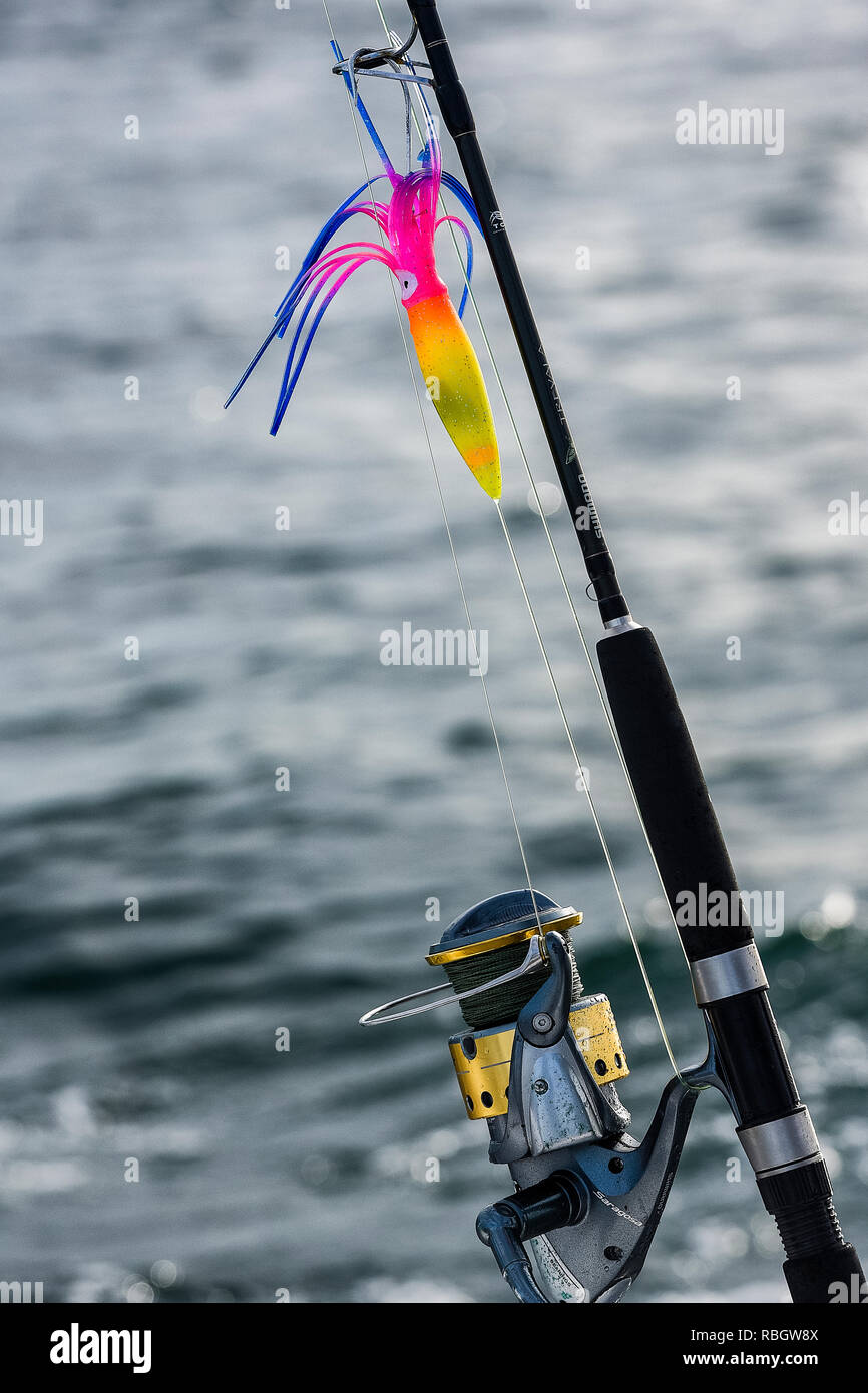 Saltwater fishing rod and lure. - Stock Image