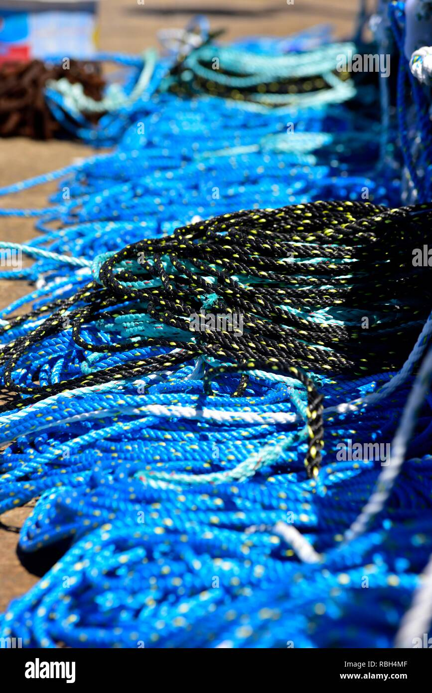 Brand new blue and black fishing ropes - Stock Image