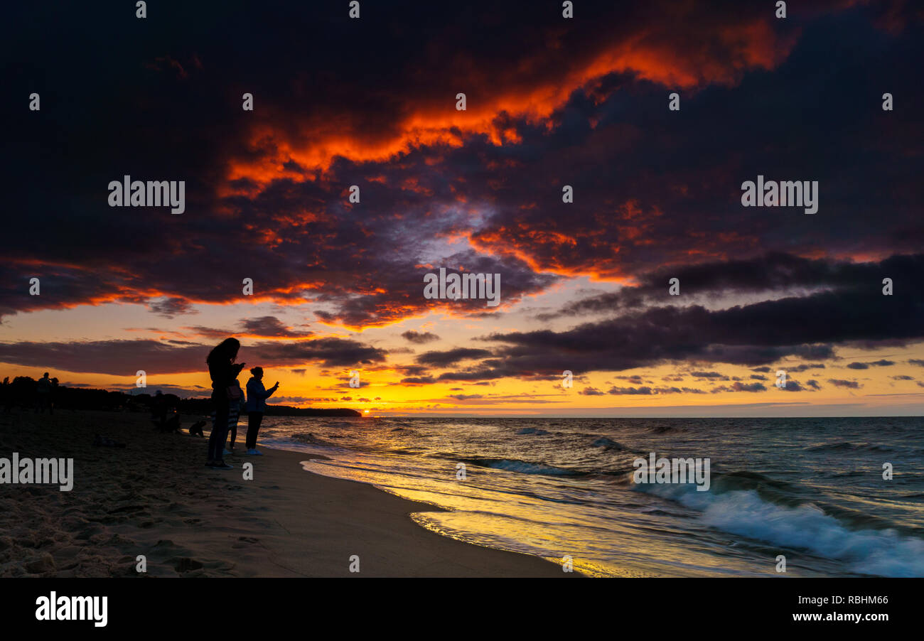 Silhouette of people looking at smartphone on sunset at the beach - Stock Image