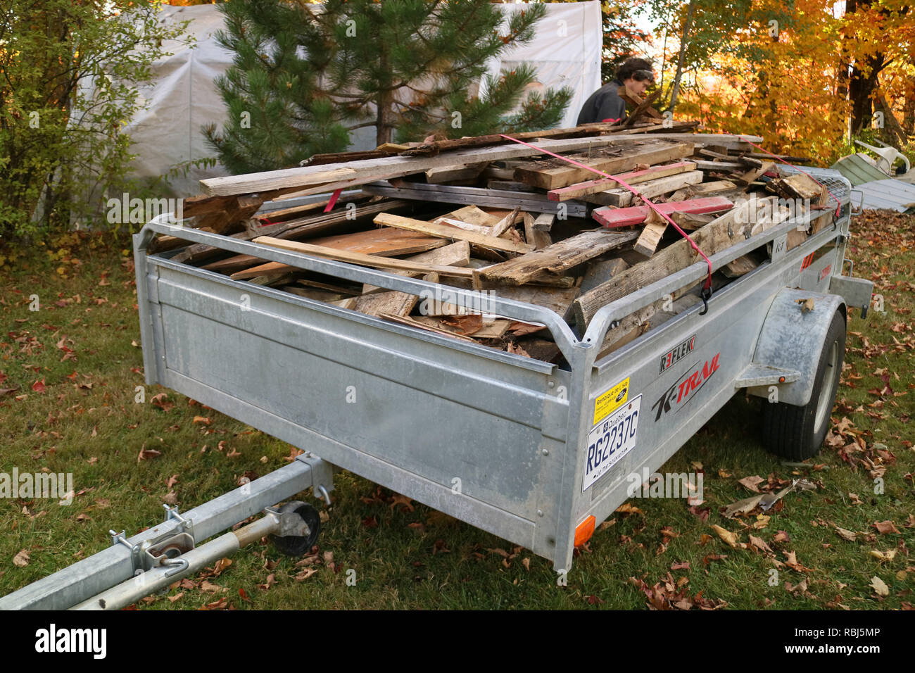 A man tying down a trailer full of scrap wood ready to be burnt - Stock Image