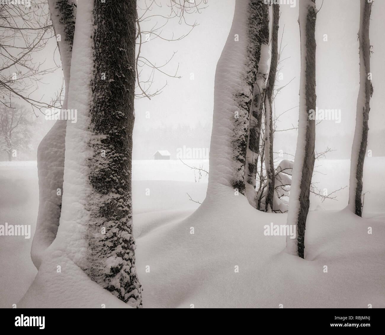 DE - BAVARIA: Wintertime near Bad Tölz Stock Photo