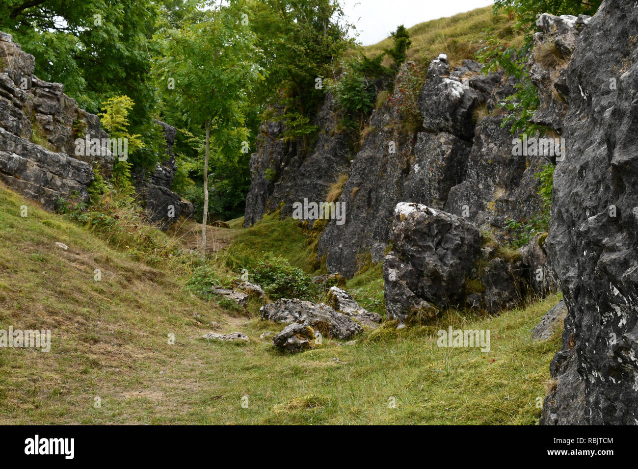 Ubley Warren on the Mendip hills in Somerset, shown here are worked out mineral veins or 'rakes.These are among the uneven mine workings - Stock Image