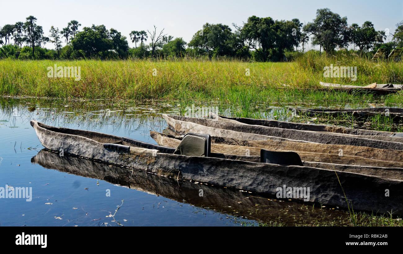 Makoro dugout canoes reflected in the still swamp waters, Okavango Delta, Botswana, Africa - Stock Image