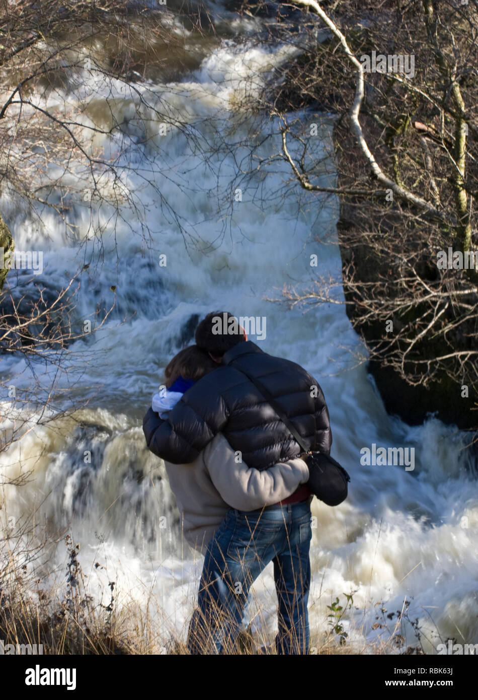 Rear view of couple watching leaping salmon. River Marteg SSSI, Gilfach farm nature reserve, Radnorshire Wildlife Trust, November. Model released - Stock Image