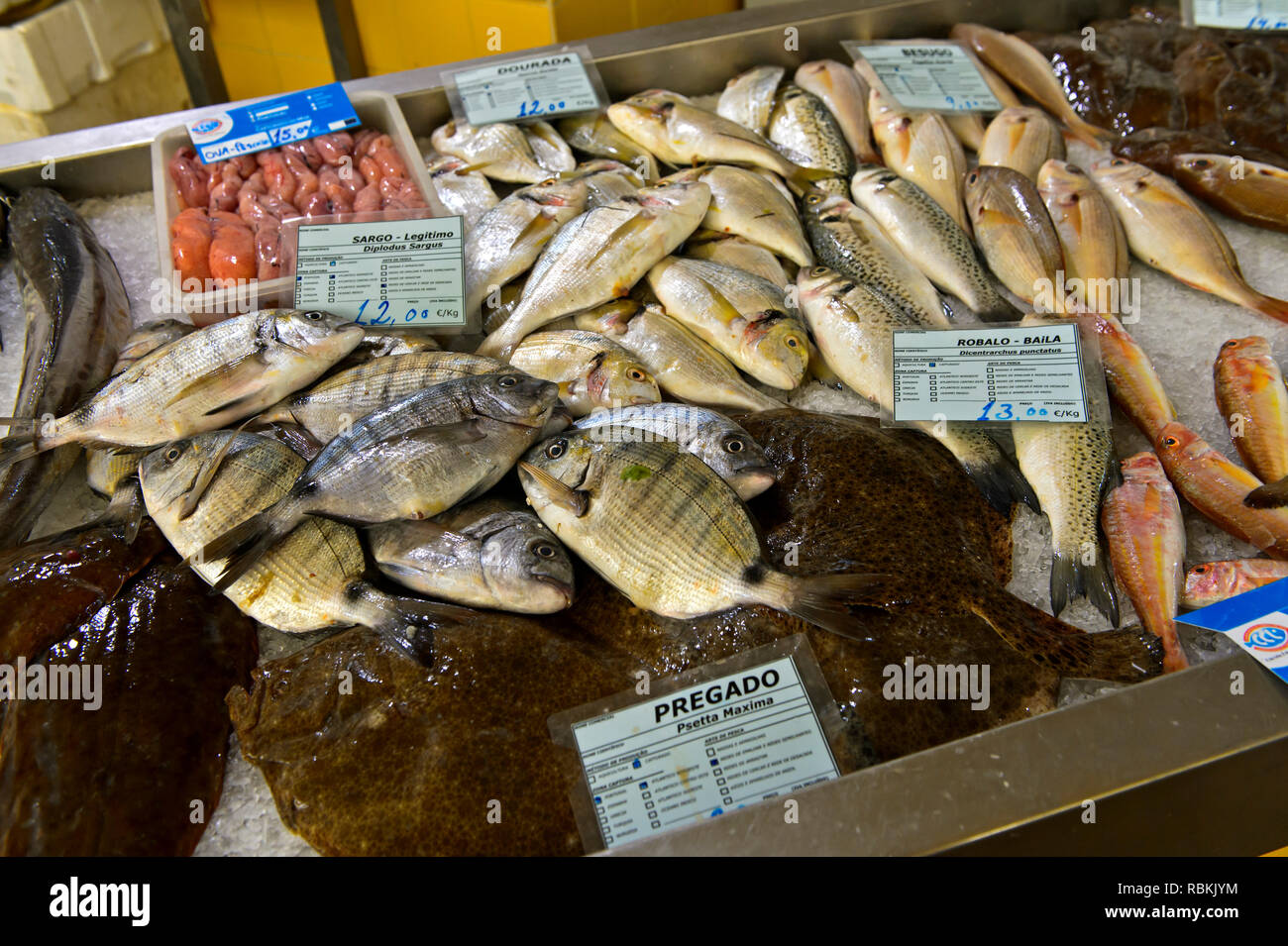 Freshly caught fish on the fishmarket, Tavira, Algarve, Portugal - Stock Image