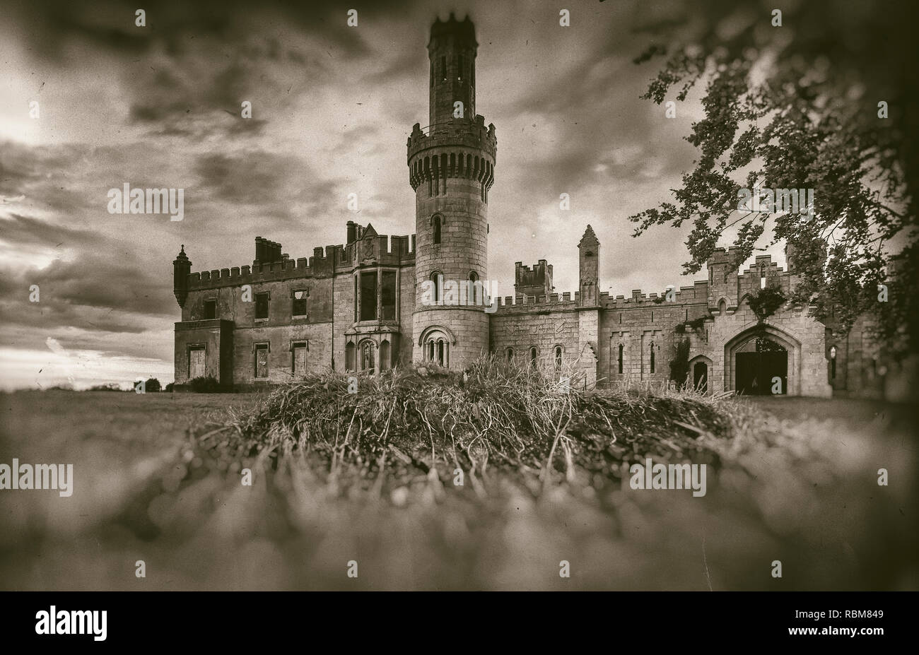 Old medieval castle ruins, tree and stormy sky in sepia style - Stock Image