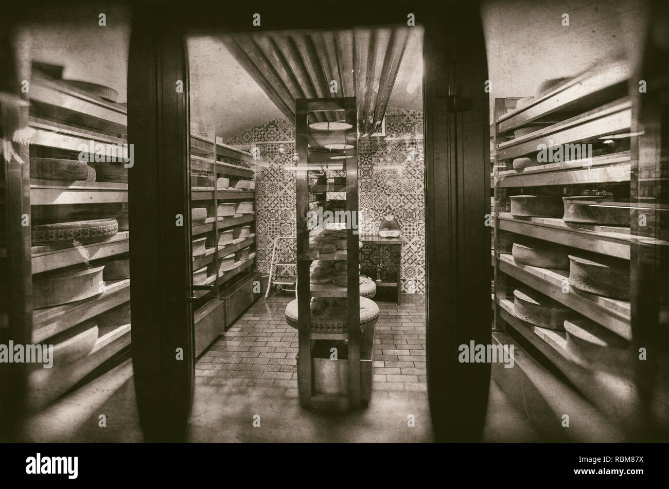 Large wheels of cheese maturing in storehouse dairy cellar - retro photography - Stock Image