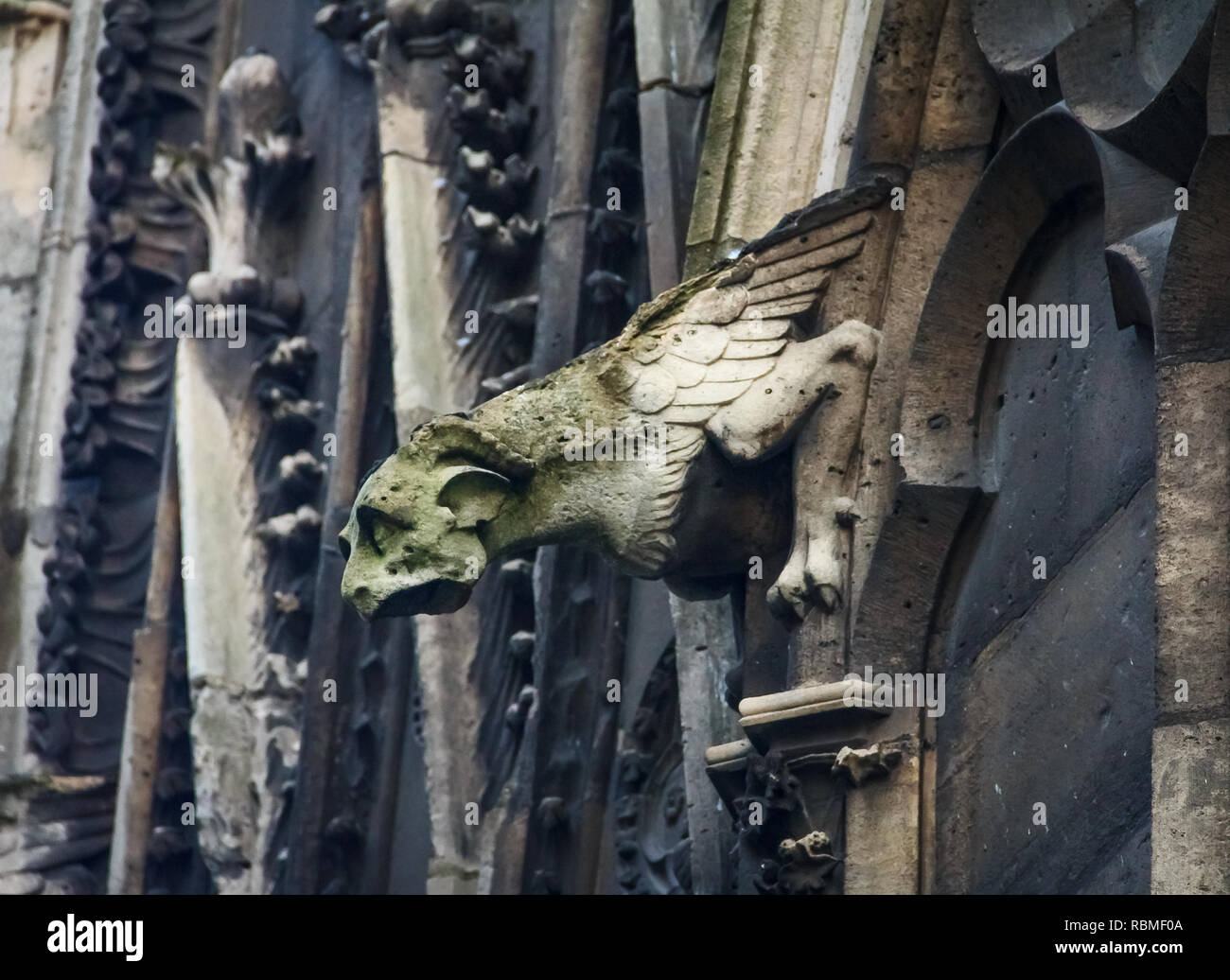 Gothic gargoyles covered in moss on the facade of the famous Notre Dame de Paris Cathedral in Paris France Stock Photo